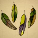 plumes en Vert